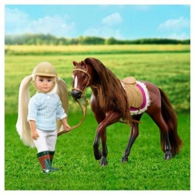 Ciemnobrązowy koń rasy American Quarter Horse.jpg